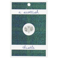 A scottish thistle